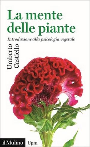 Fiori ESOTICI rarità sementi RARE giardino balcone pianta Marien Cardo